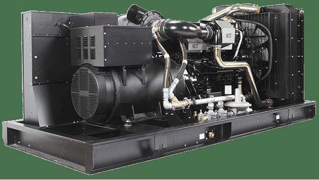 Bi-Fuel Generator